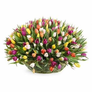 Эквадор серпухов цветы